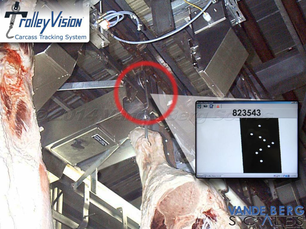 Trolley Vision beef carcass tracking system showing trolley strap