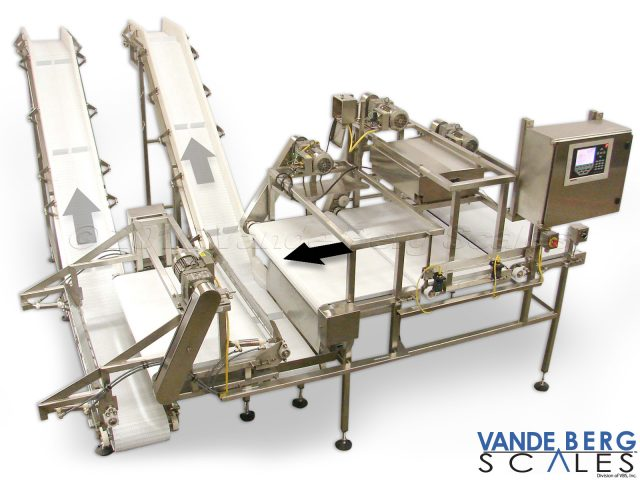 Loin Sortation System with inclined takeaway conveyors.