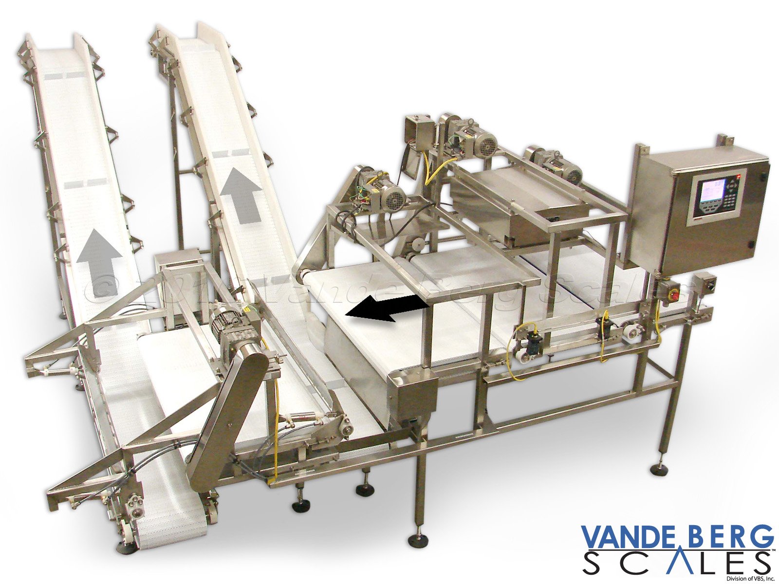 Thin product sortation system with inclined takeaway conveyors.