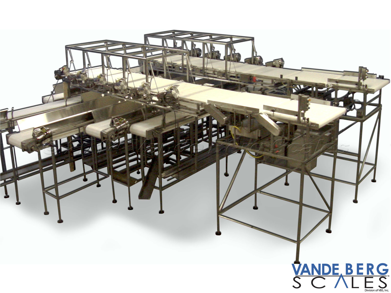 Dual Lane Loin Sortation System - Product is dropped onto the crossover conveyors which carry product to combos or other parts of the plant for further processing.