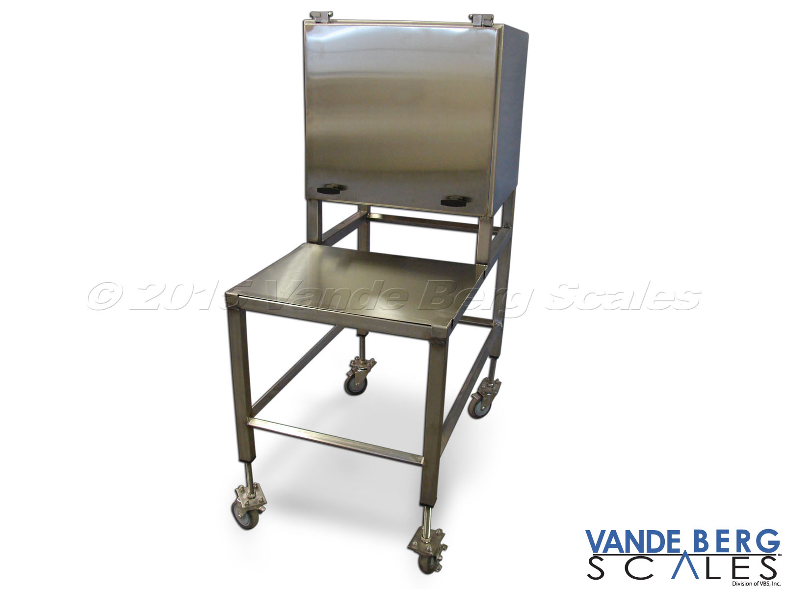 Mobile stainless steel cart with NEMA-4X enclosure and work platform.