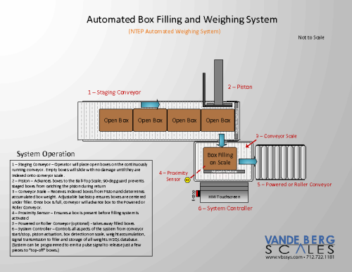 Automatic Box Filling System with In-Motion Scale