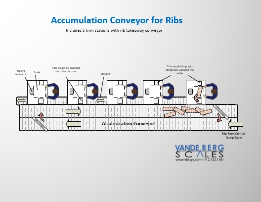 Rib Accumulation Conveyor with Trim Stations and Takeaway Conveyor